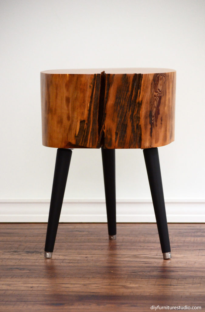 live edge tree slice stump table with black mid century modern legs